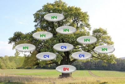 Схема частотности поисковых запросов в виде дерева